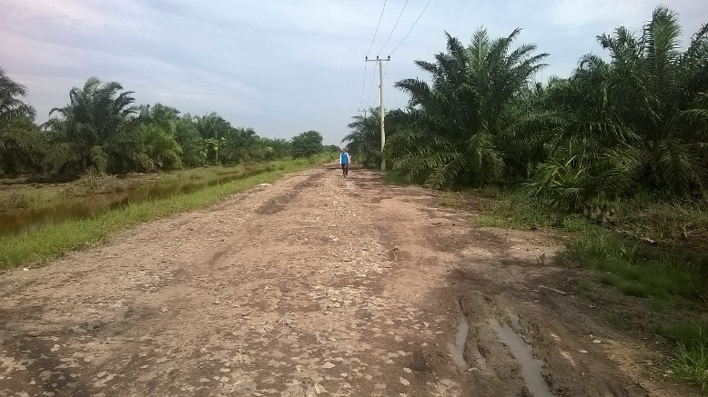 Jalan (sebagian) menuju Tenggulang Baru