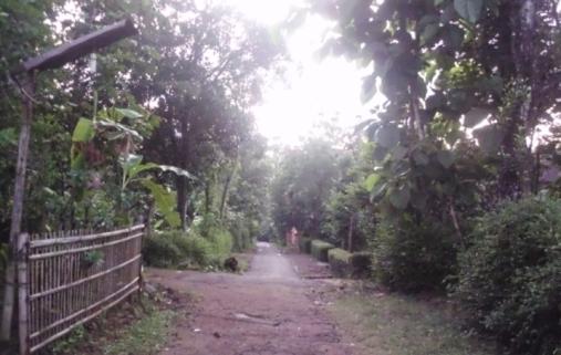 Situasi desa Ngemplak TwSari dipagi hari (2013-12-27)