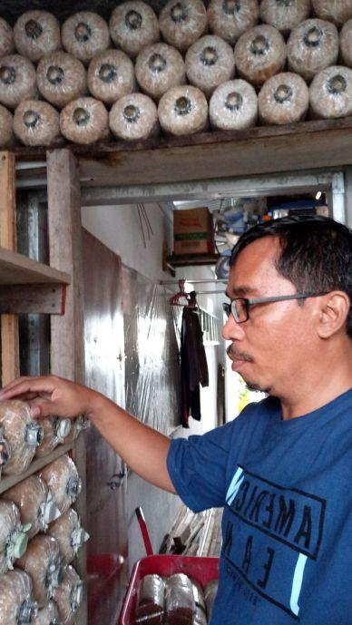 Baglog Jamur Tiram Kissparry 20180218