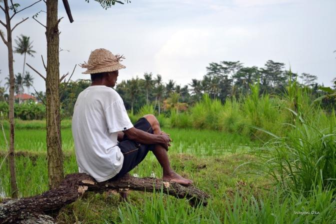 Bupati Badung Bali, Gratiskan Petani Bayar Pajak PBB