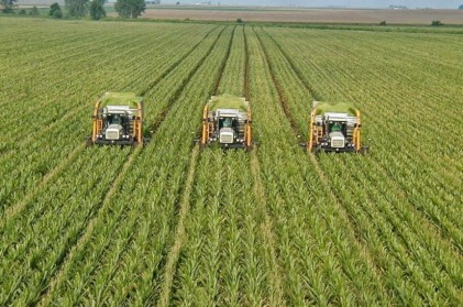 sustainable-agriculture-the-agrinewsbs