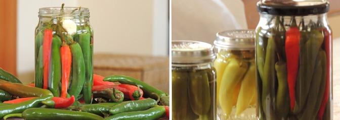 Pickle, Makanan yang Diawetkan Bisa Tahan Lama