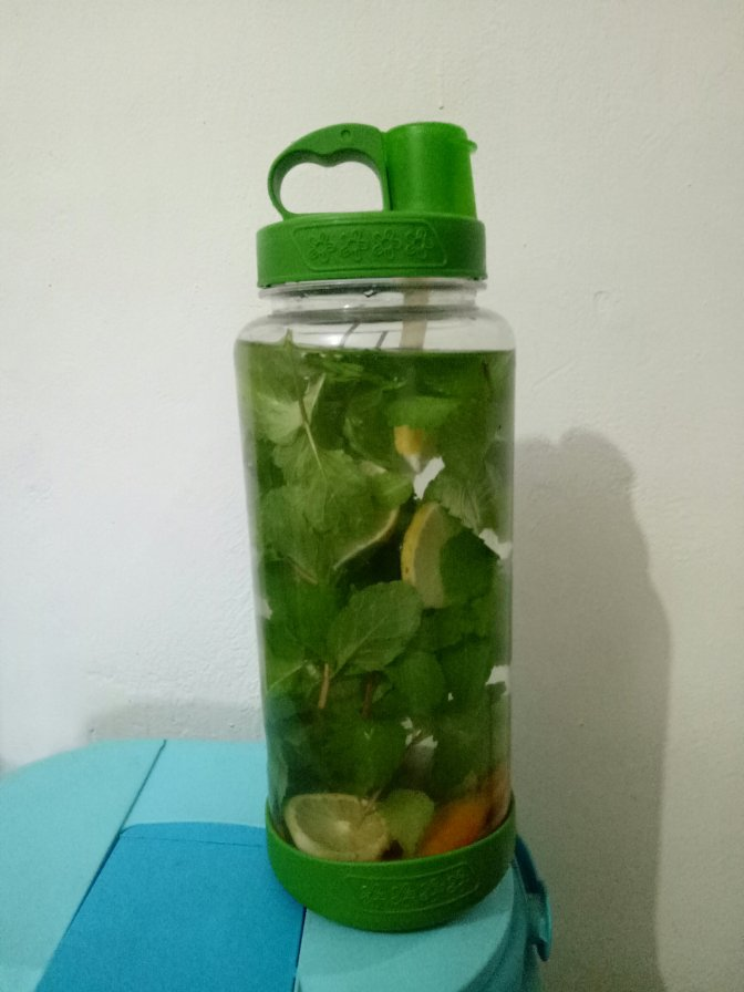 Manfaat Infuse Water Daun Mint