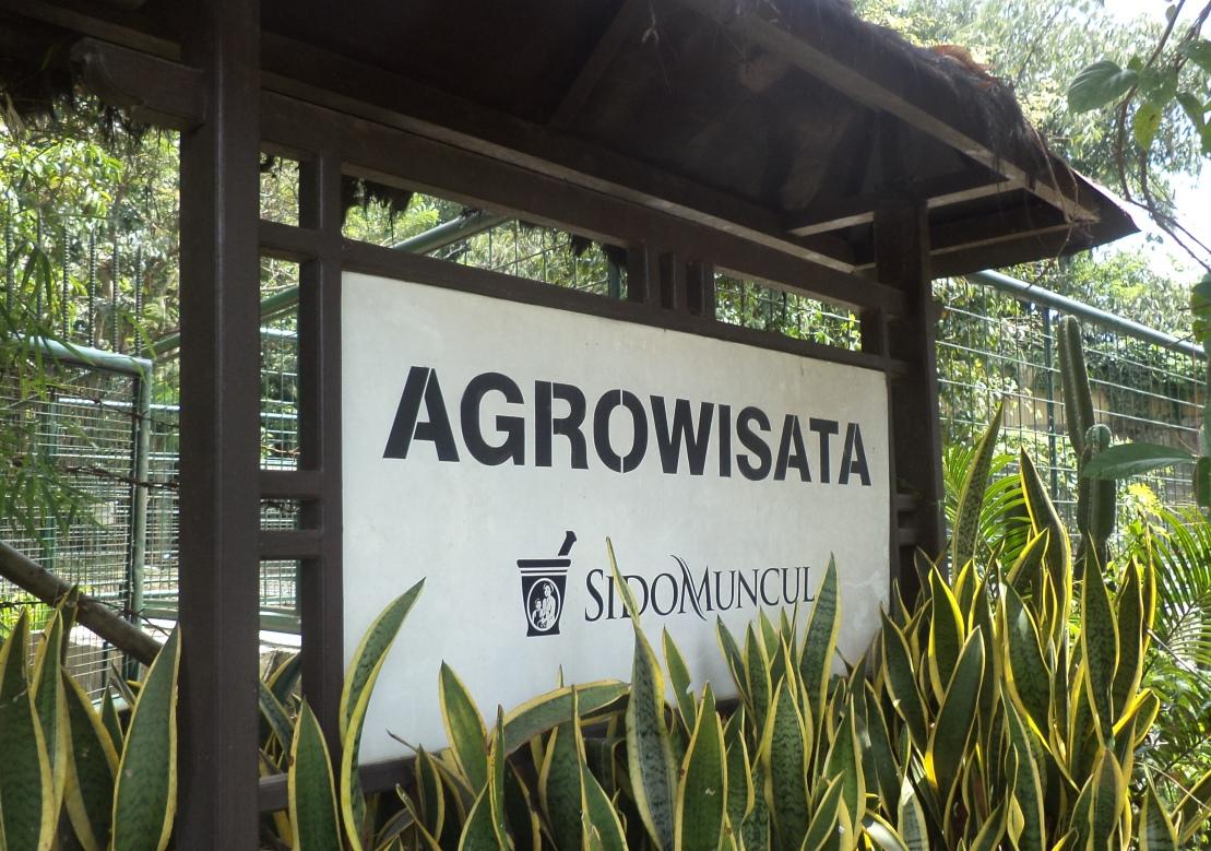 Sido-Muncul-Agrowisata-papan