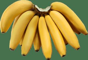 pisang-ambon-hibrida.png