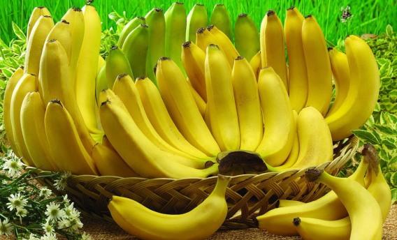 pisang_dianliwenmicom793f8dbcd8