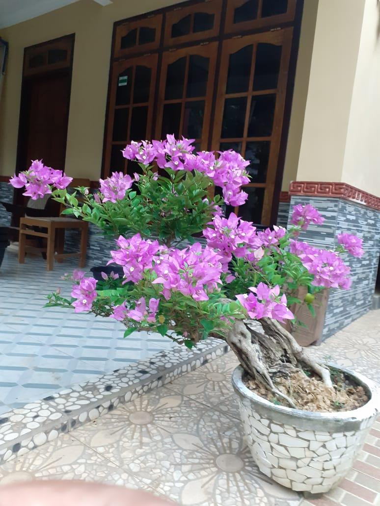 Serat Kodrat Lan Pituture Simbah (Jawa), sebuah Renungan dan Muhasabah