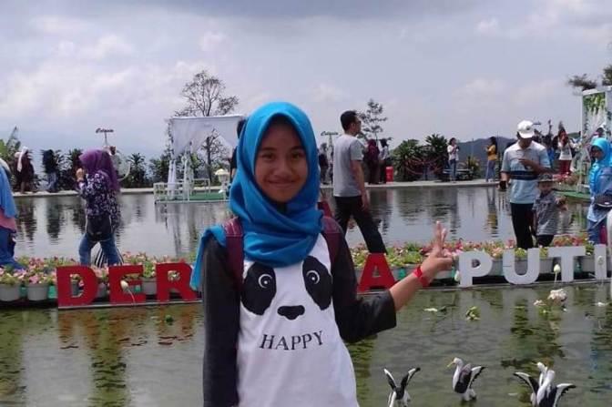 Taman Bunga Celosia II Bandungan Terkini, 2018 November