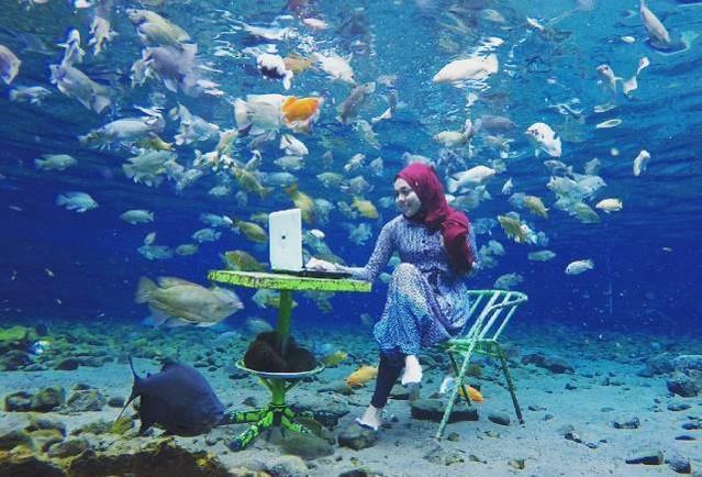 Snorkling dan Diving Air Tawar Ada di Umbul Ponggok Klaten